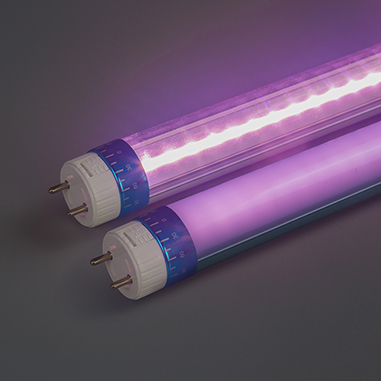 Pink led tube for meat and fish